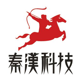 秦汉科技店铺代运营