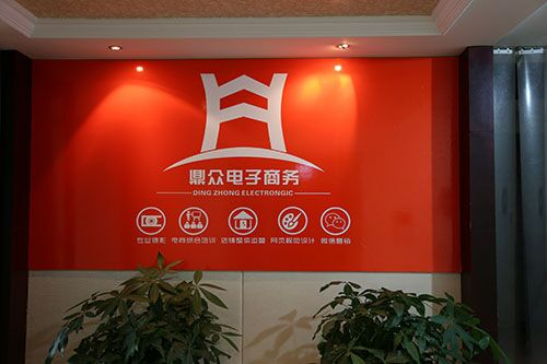 乐清柳市淘宝天猫京东阿里巴巴托管代运营电商设计培训产品摄影