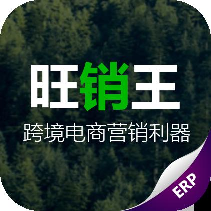 旺销王 ERP (跨境电商ERP)
