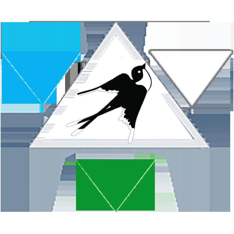 飞燕电商-专业代运营服务