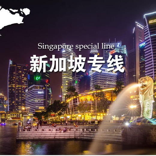 国际海运空运双清到门新加坡专线