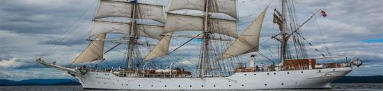 【平台用品】构建船舶航海用品B2B电商交易平台,健壮产业生态