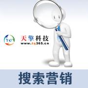 天擎科技搜索营销