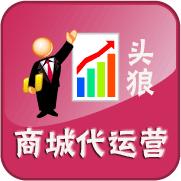 深圳淘寶外包 天貓商城代運營  淘寶運營人才輸送