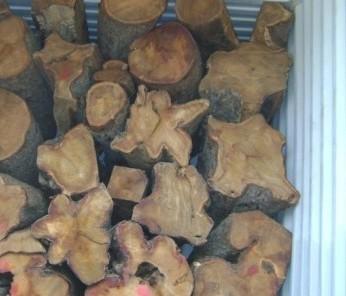 木材进口报关报检代理
