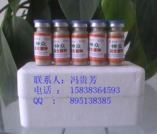 EM发酵饲料菌种