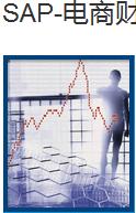 SAP-电商财务软件