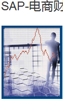 SAP-電商財務軟件