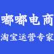 嘟嘟电商_网店全店托管_店铺代运营_京东天猫淘宝亚马逊