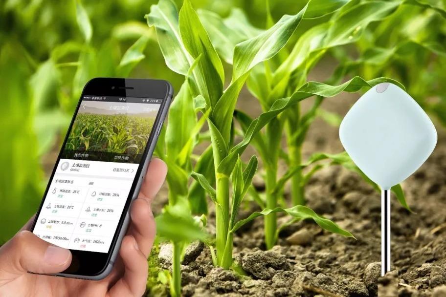 互聯網+農業有哪些可行性解決方案?有哪些應用場景?